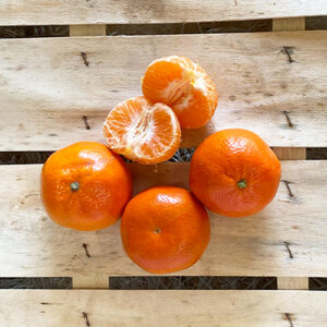 Clementinen Nardocott