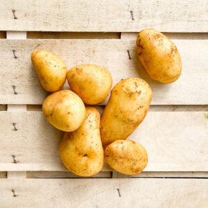 kartoffeln-mehlig