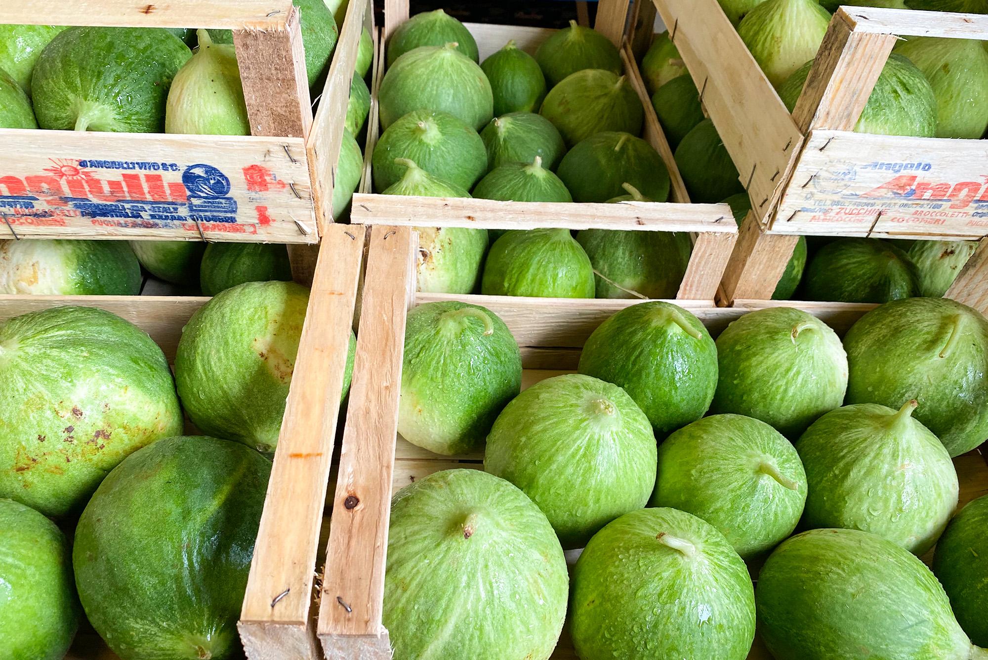 Gurkenmelonen