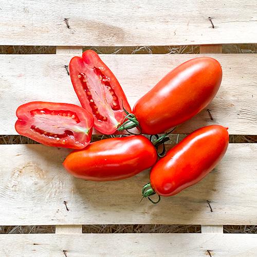 SanMarzano Tomaten